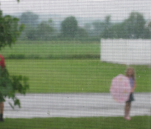 Umbrella_seen_through_screen